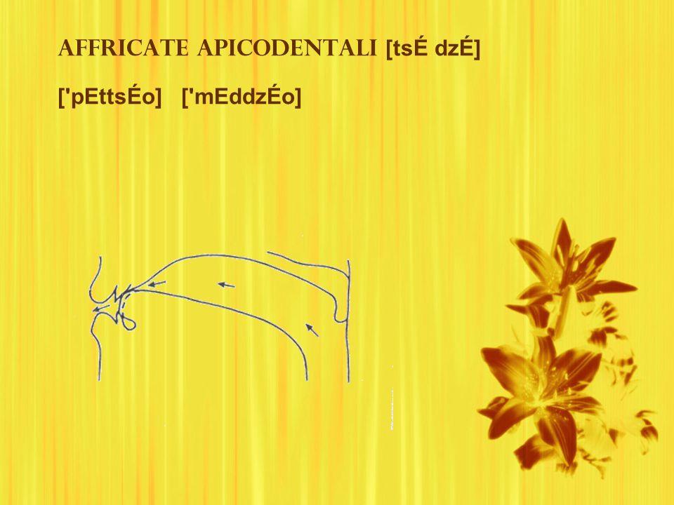 Affricate apicodentali [tsÉ dzÉ] [ pEttsÉo] [ mEddzÉo]